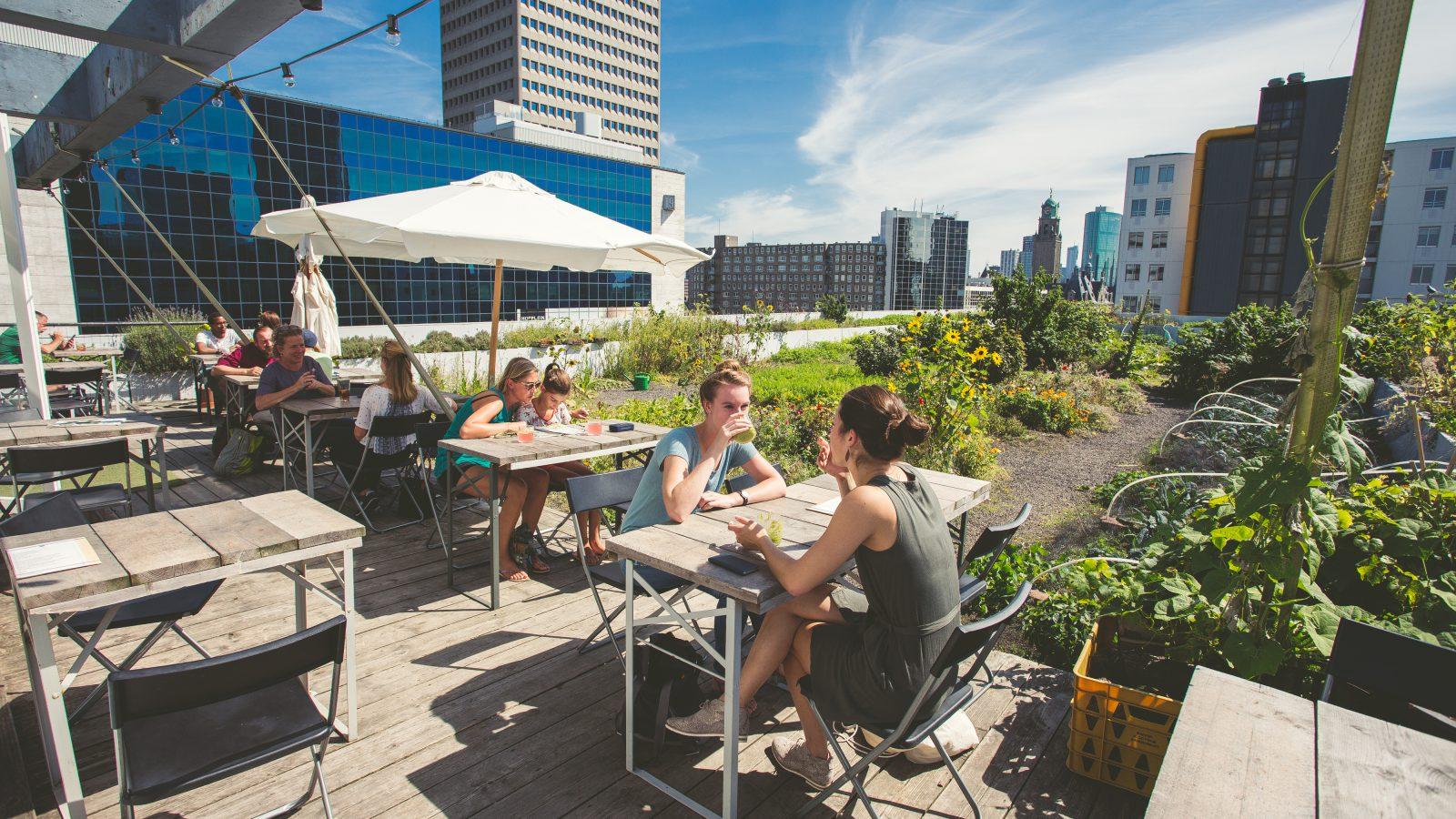 Op Het Dak – Het rooftop restaurant voor ontbijt, lunch en drinken op de grootste dakakker van Europa. Hier werken we met duurzame producten van eigen oogst, lokale leveranciers en serveren een wisselende seizoens menu.